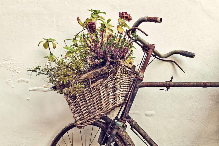 Corrosión Óxido Bicicleta