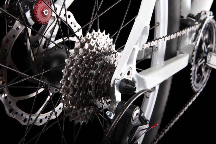 Engranes Bicicleta Transmisión