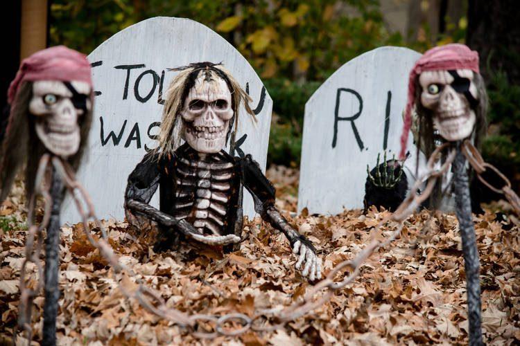 Almacenar Decoraciones Halloween Día Muertos
