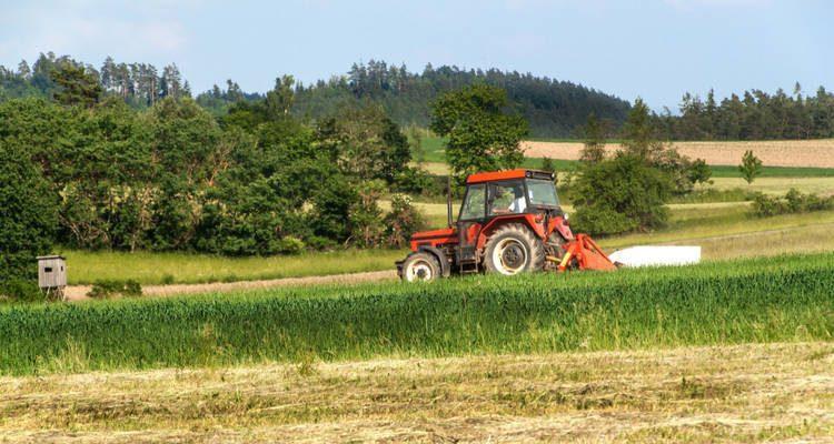 Tractor Mantenimiento Primavera